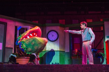 Little Shop of Horrors, Fall 2014